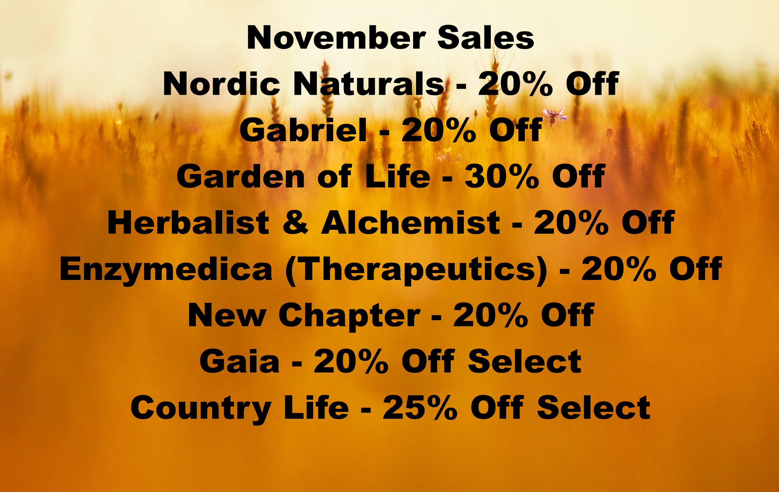november sales.jpg