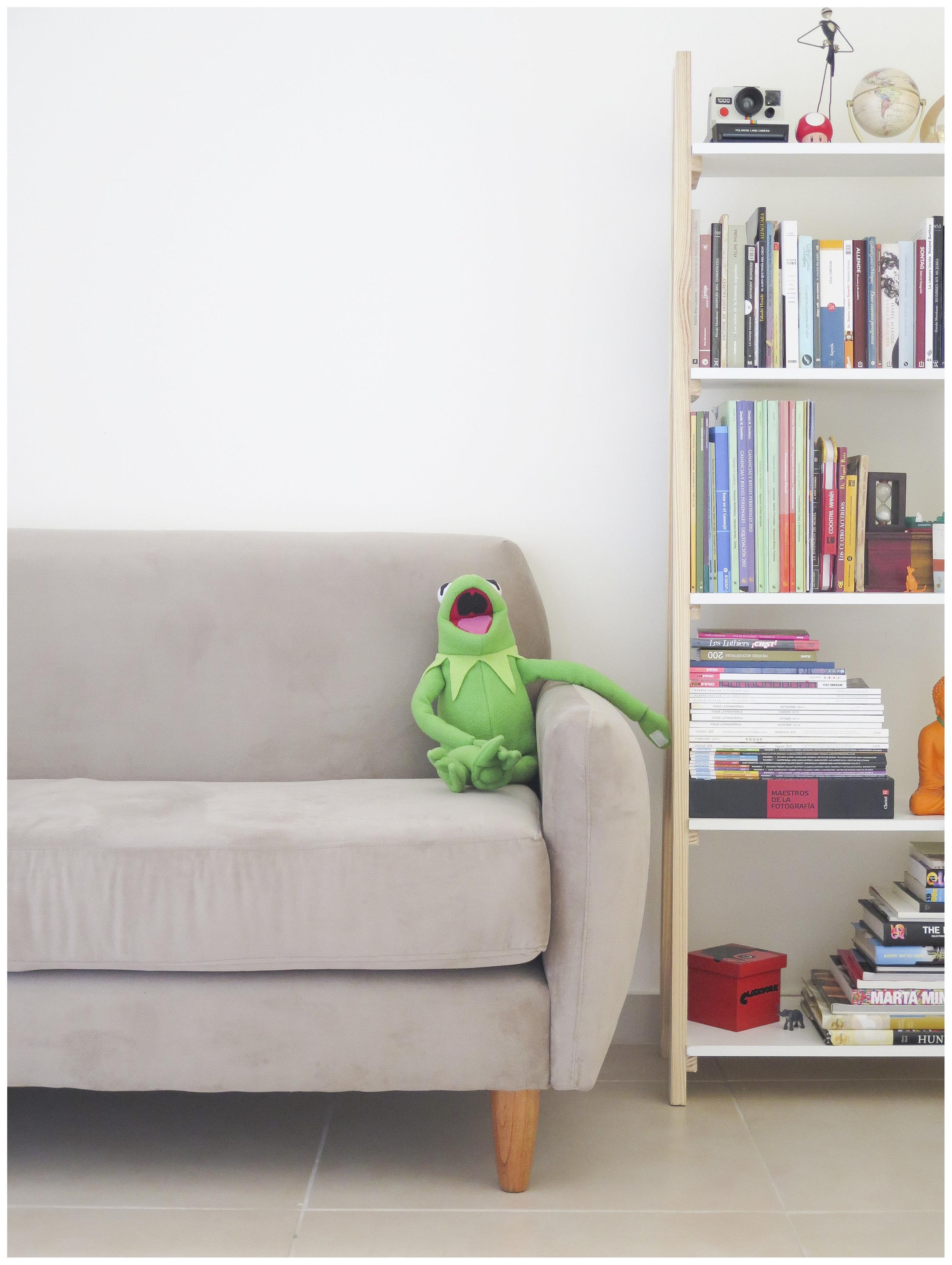 Kermit at the Club