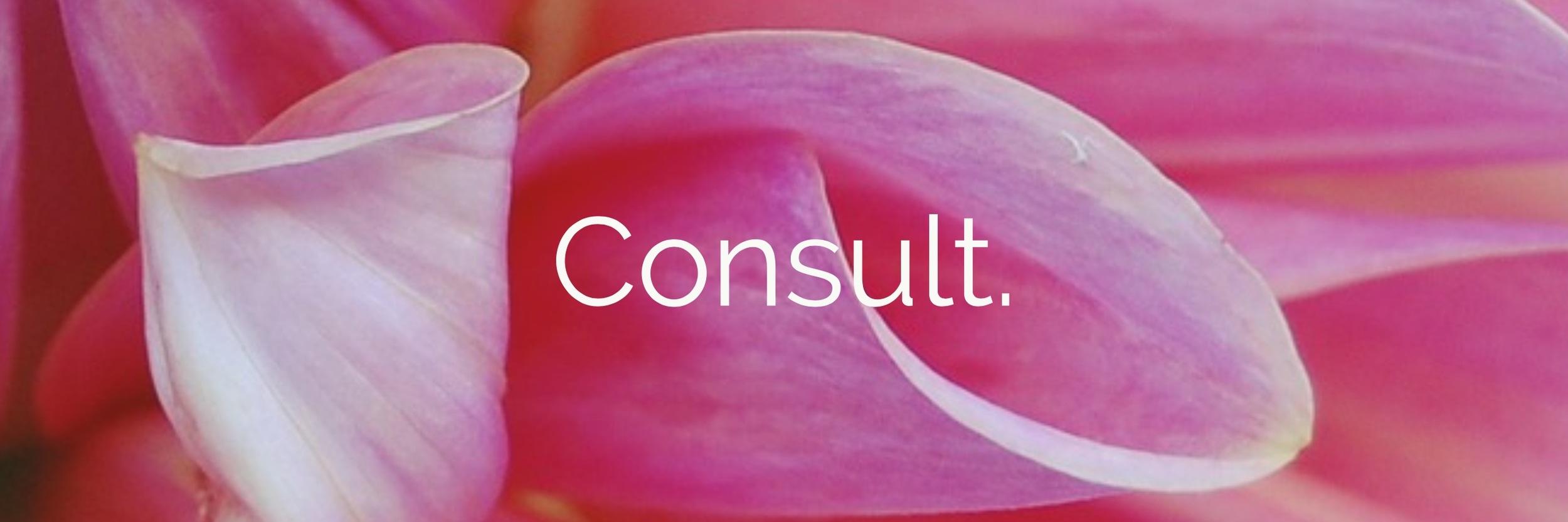 Consult.jpg