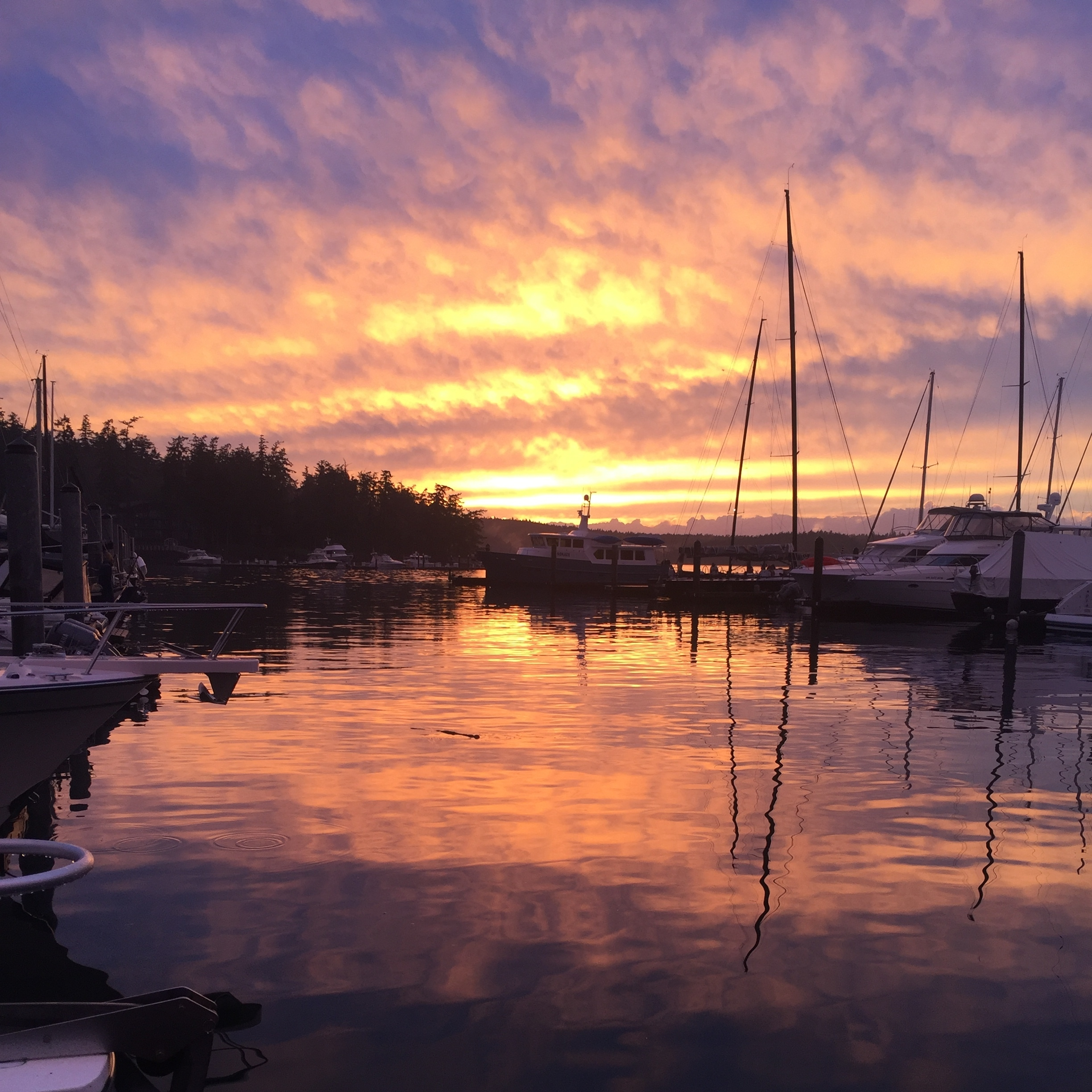 """Sunset at Roche Harbor on San Juan Island after Day 1 of racing """"Round The County"""" on a J111, November 2016"""