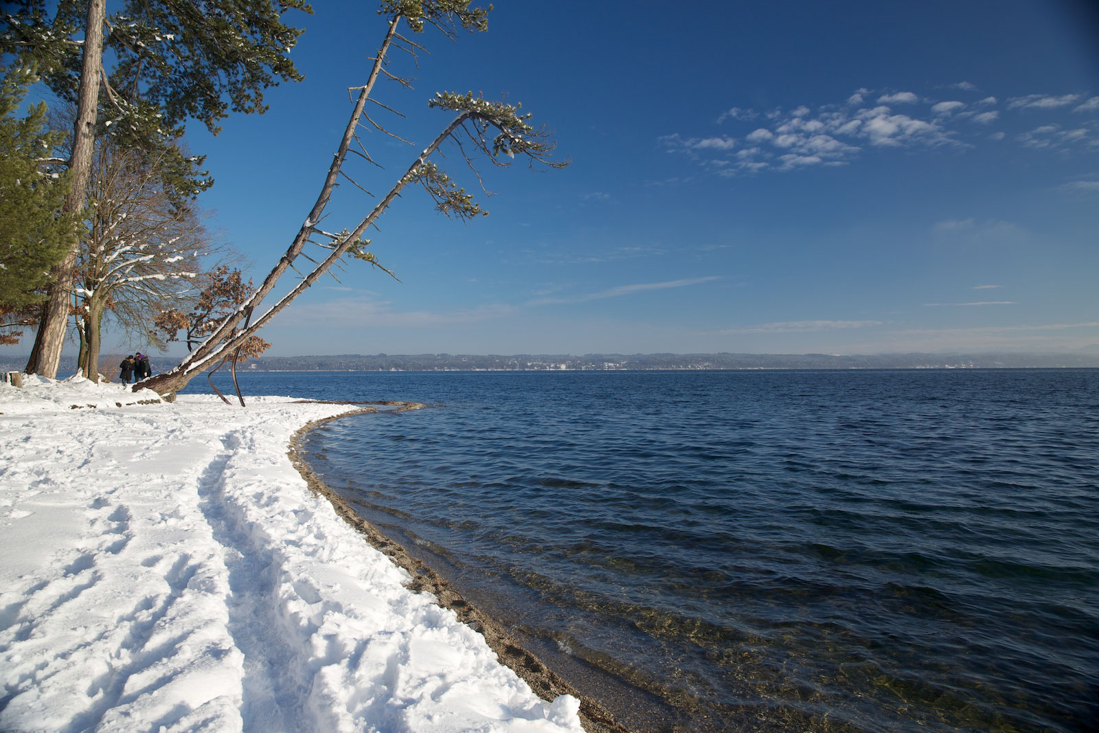 Starnberger_see_Häring_Winter.jpg