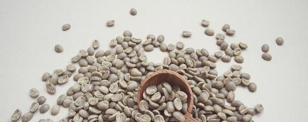 baristas-et-associes-cafe-de-specialite-cafe-vert-barista-coffee-shop