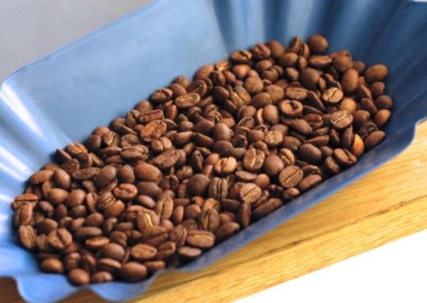 grains-cafe-de-specialite-coffee-shop-consommateur-achat-conseil-barista