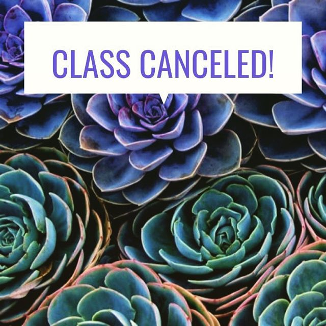 NO CLASS TONIGHT!!!!! 😭 We are taking a break from our beloved weekly Yoga Socials to reconfigure our organization. 💫 💫 💫 Hope you're all hitting the mat where and when you can. We look forward to seeing you soon. 💫 #yoga #yogasocial #donationyoga #redondobeach #southbay  #womansclubofredondobeach #selfcare