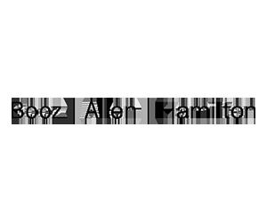 Untitled-1_0021_BoozAllenHamilton-425x125.png