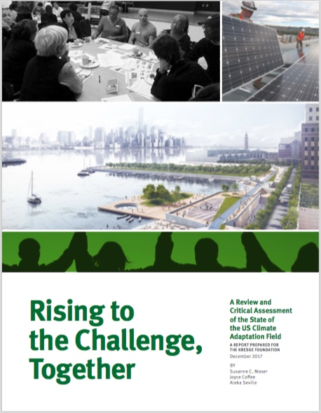 Seminal Report for the Kresge Foundation and the Resilience Field
