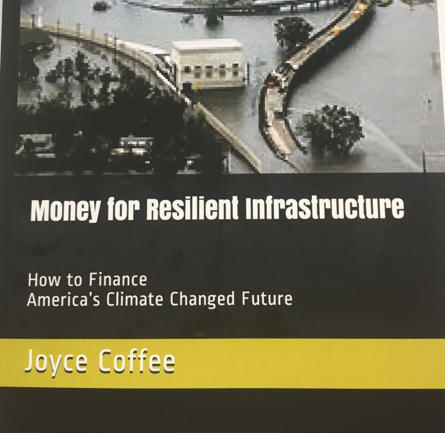 Resilience Finance 101 -