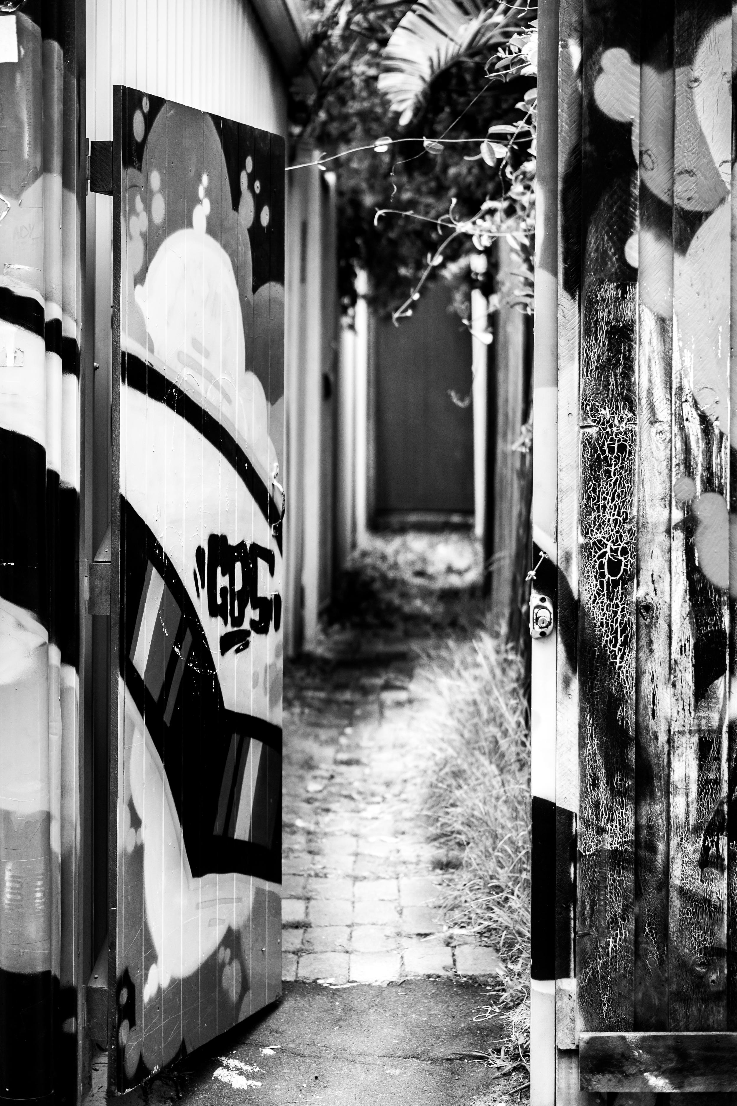 Sydney - St Peters - Street Art - Blackyard.jpg