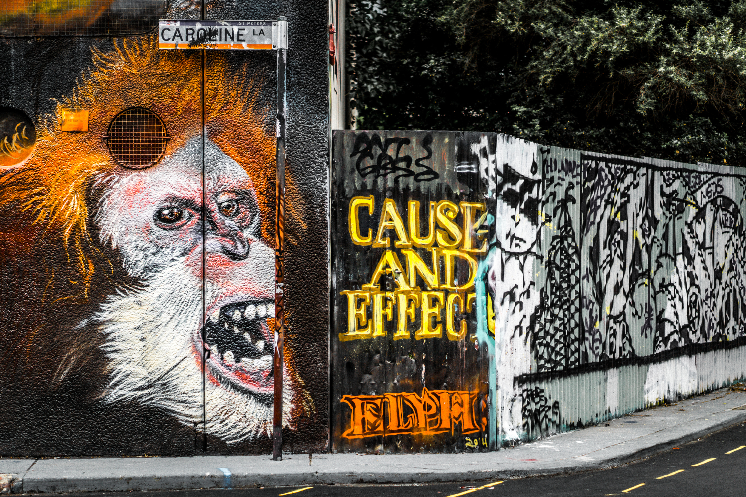 Sydney - St Peters - Street Art - Cause and Effect.jpg