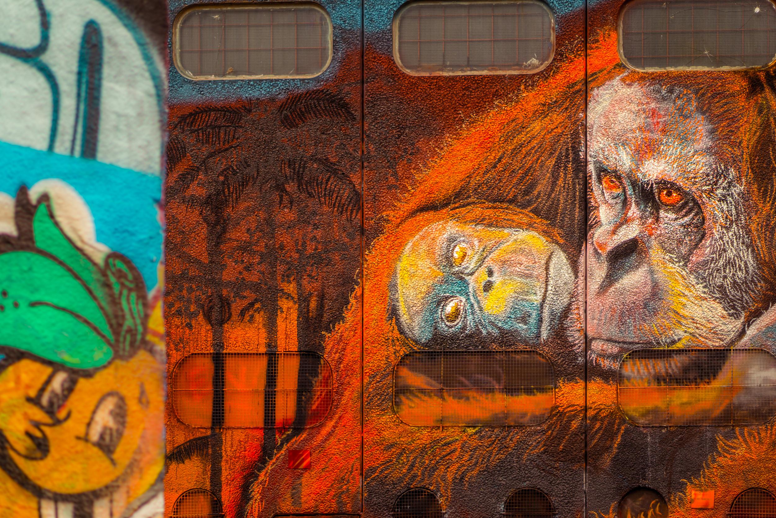 Sydney - St Peters - Street Art - Orange Tears.jpg