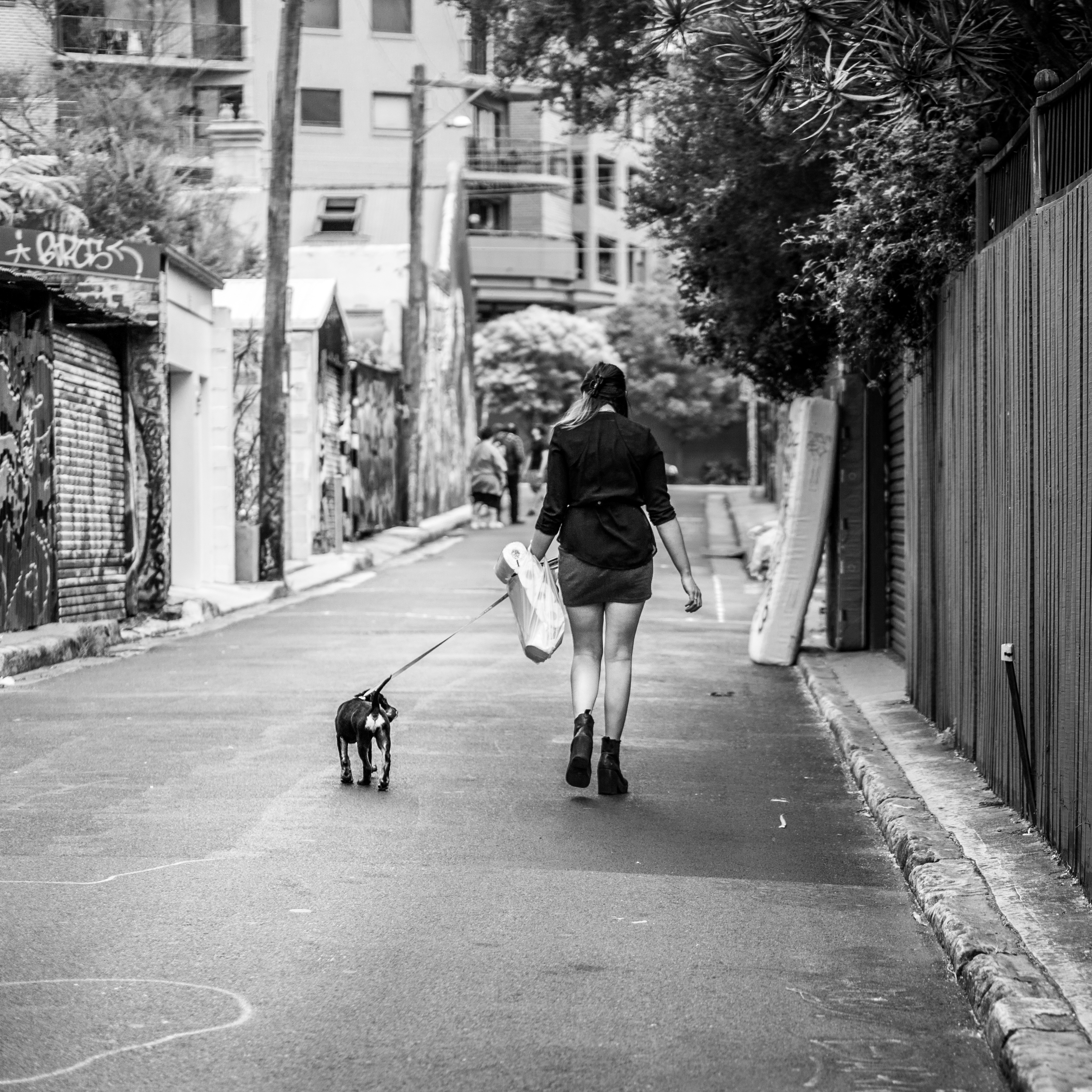 Sydney - St Peters - Street Art - Puppy Needs a Walk, Girl Needs Paper.jpg