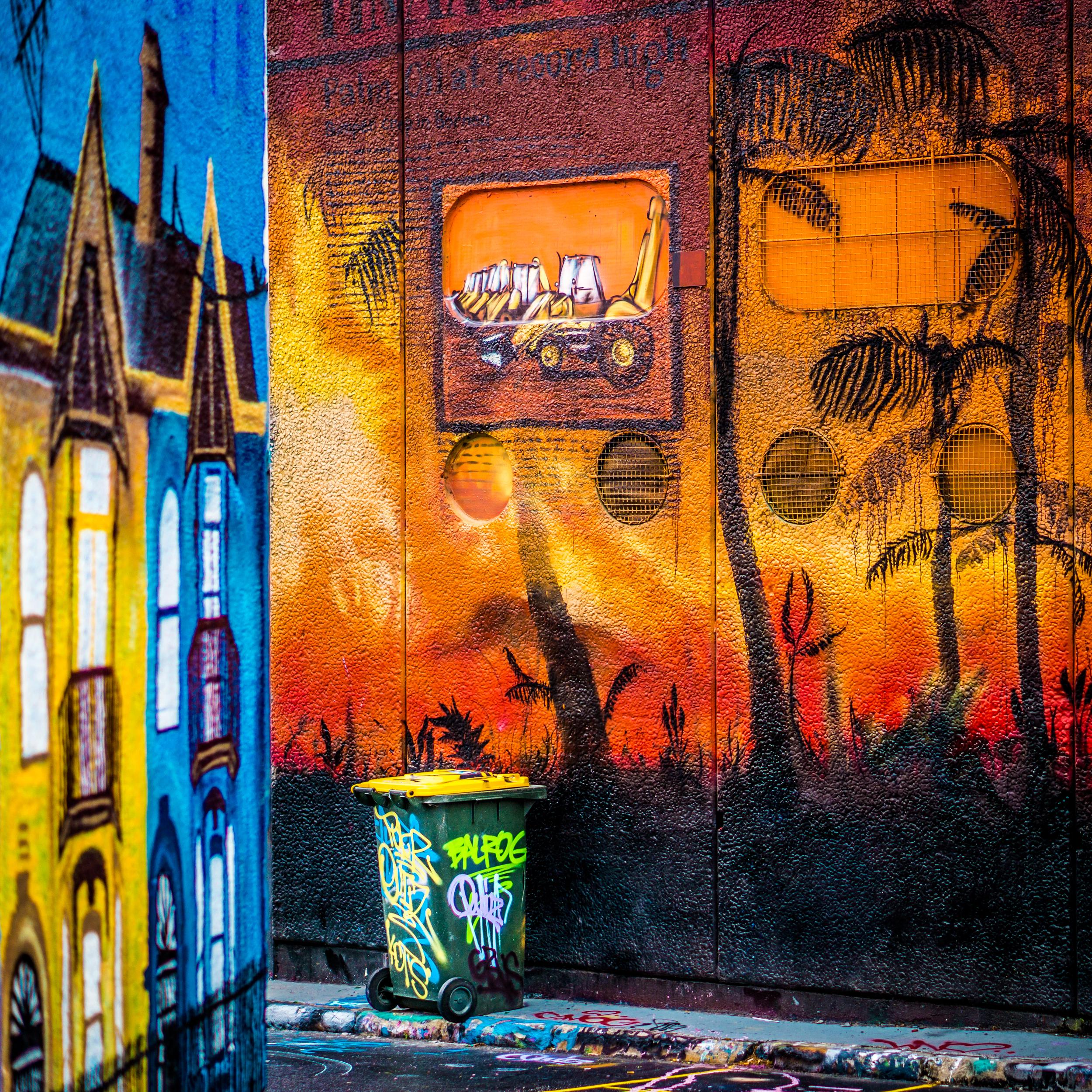 Sydney - St Peters - Street Art - Where You Bin.jpg