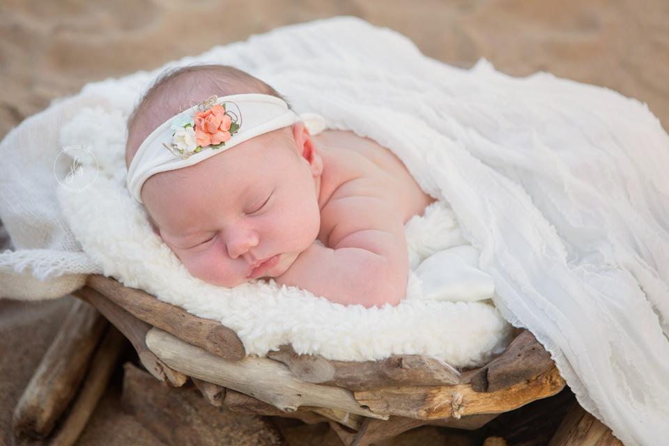 newborn baby girl in basket on the beach