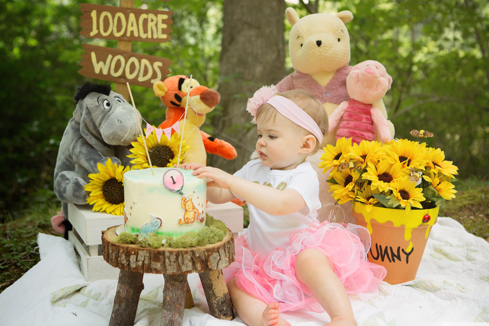 Vintage Winnie the Pooh cake Smash in the woods with Jessica LS Photography in Lake Ridge, VA