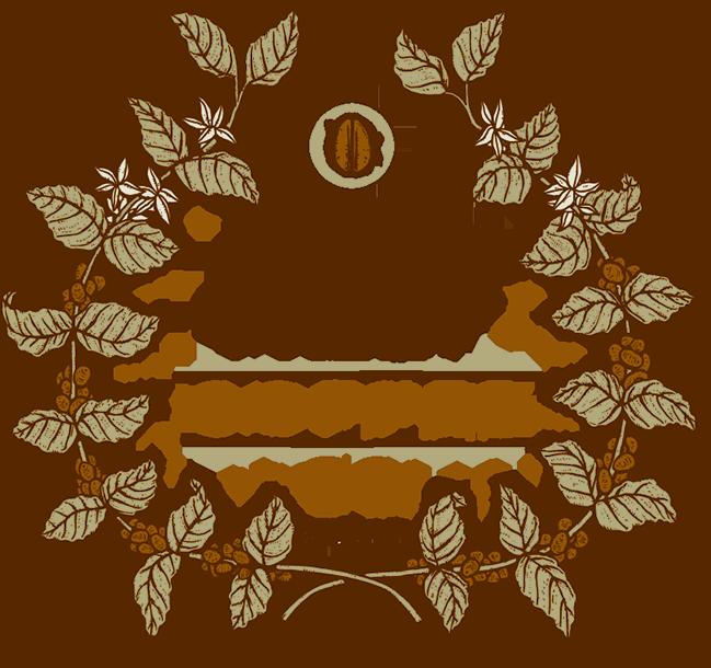 Bean Fruit // Jackson, MS