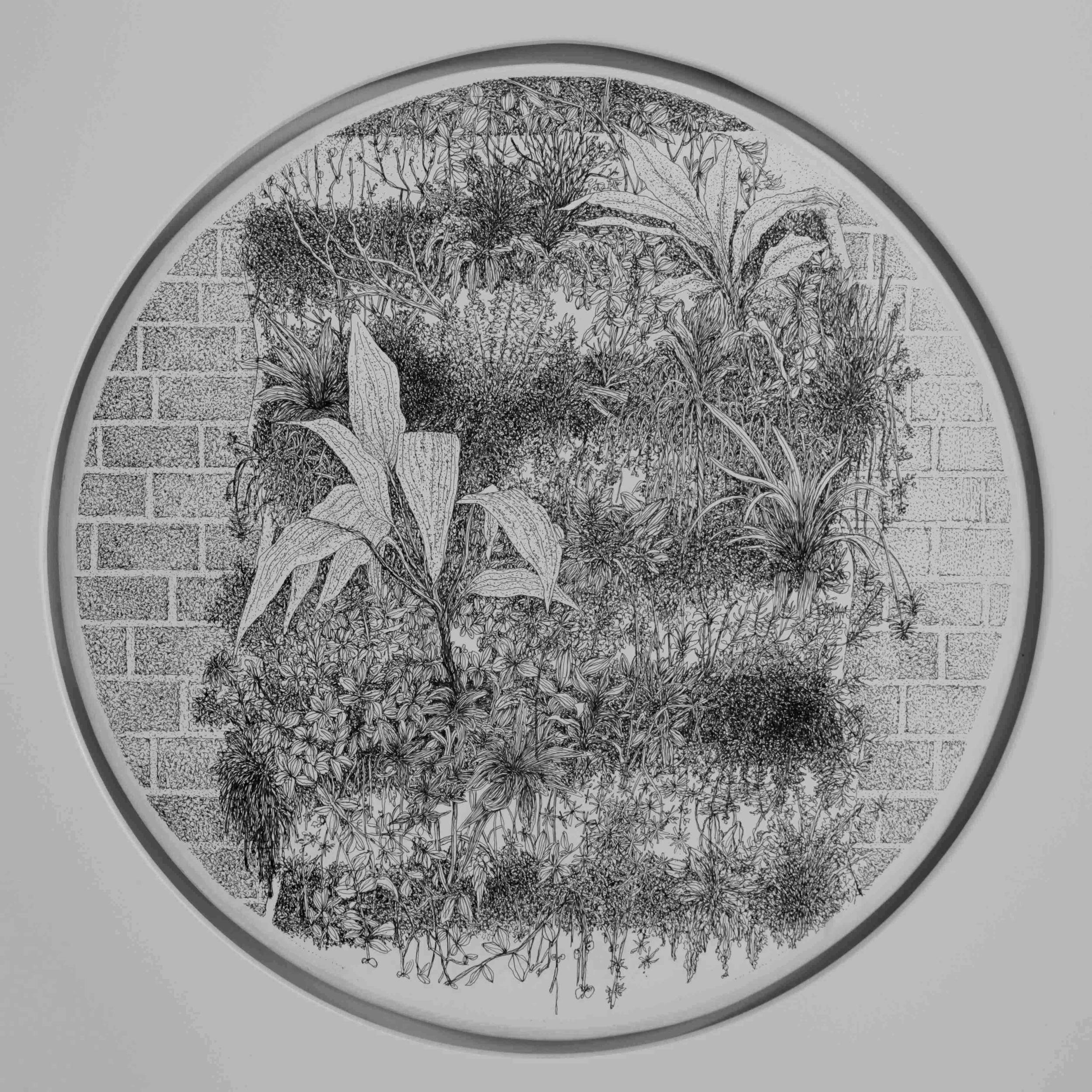 Wall garden II