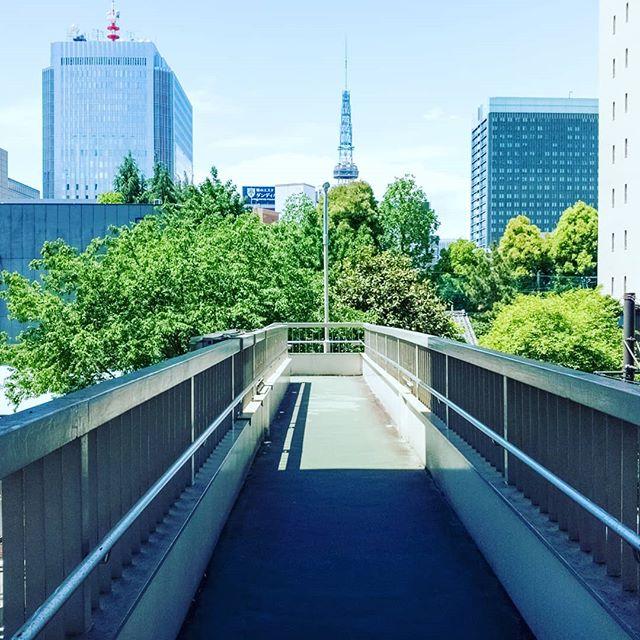 #greens #spring #hotday #beautiful #smellgreen #photographoftheday #tvtower #fulfilled #pedestrianbridge #bridge #shake #refreshing #breaktime #underthesun