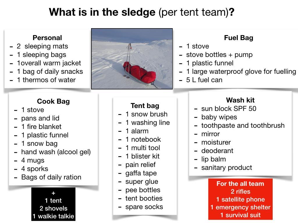 sledge.jpg
