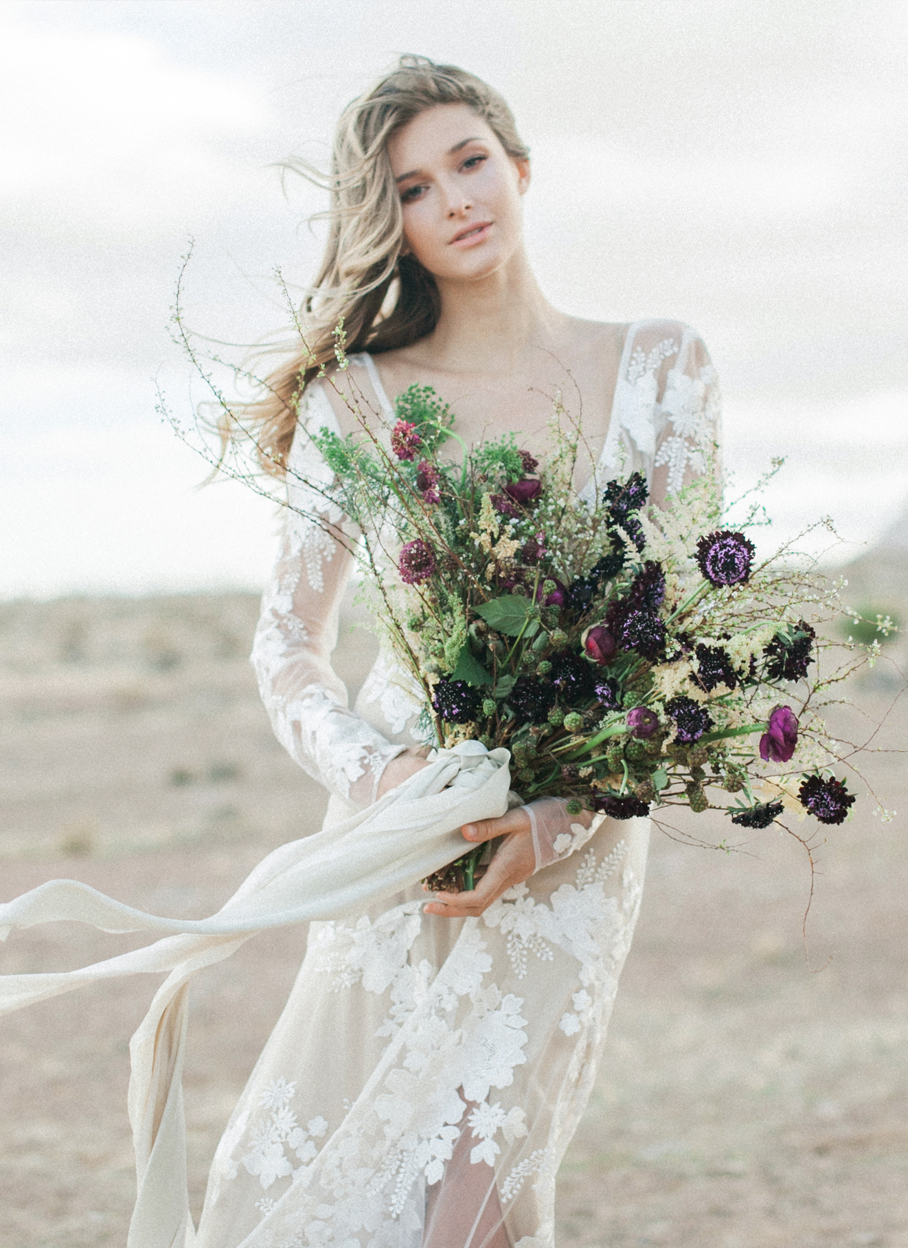 The Wild Rose -