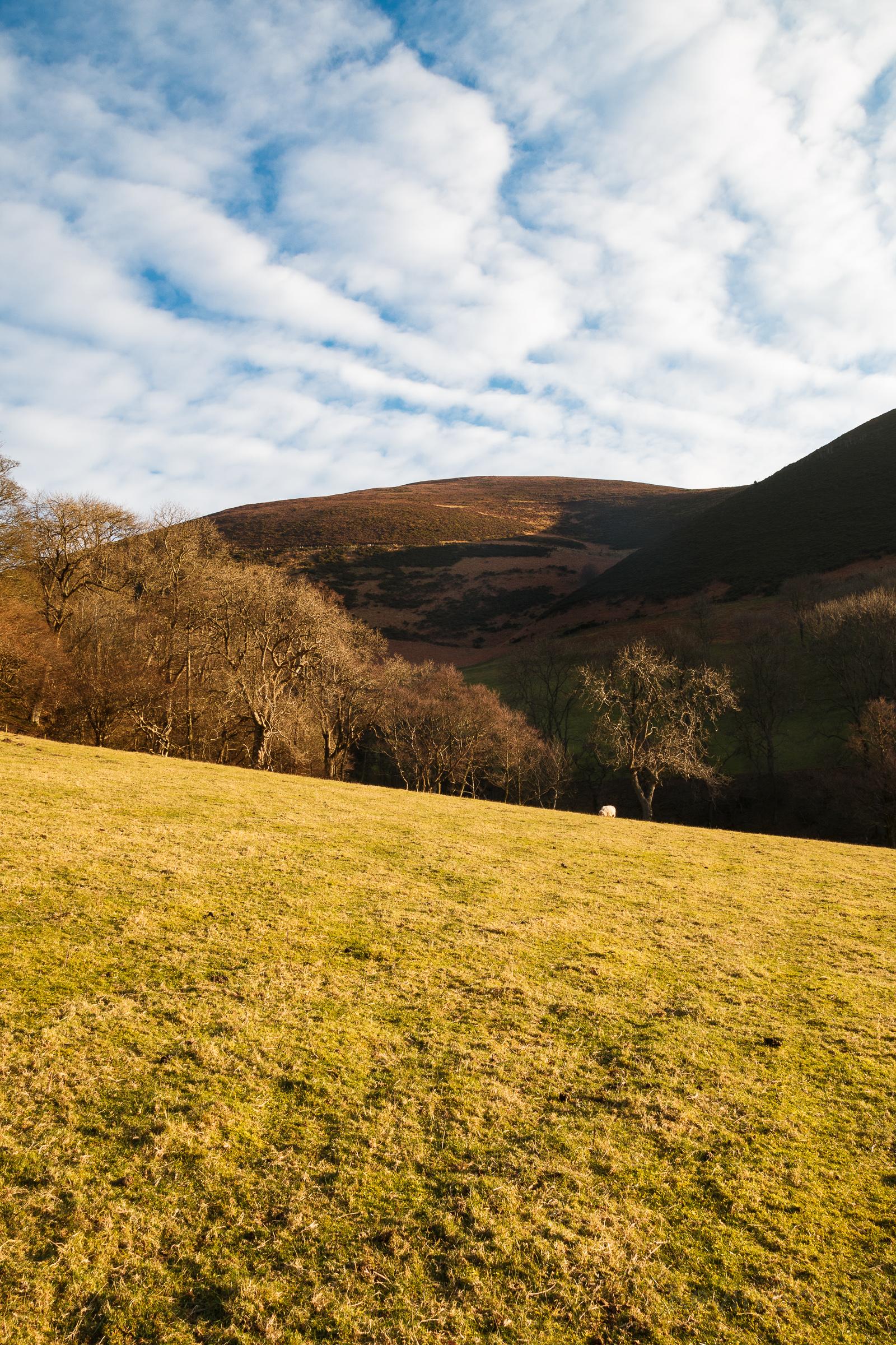 Wales - 2016_02_13-82.jpg