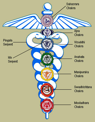 Serpents entwine the healing system of yoga