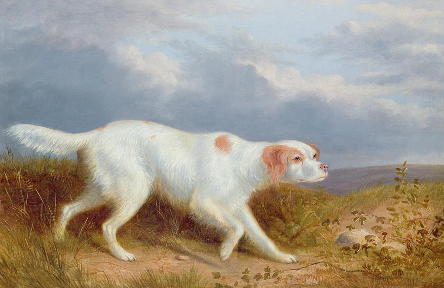 Painting by Reinagle of a ' pale fawn color'  English setter.