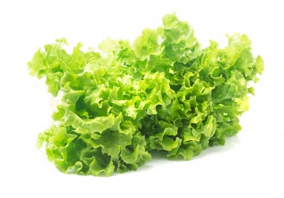 feuille-de-salade-laitue-isolee-sur-fond-blanc_1088-989.jpg