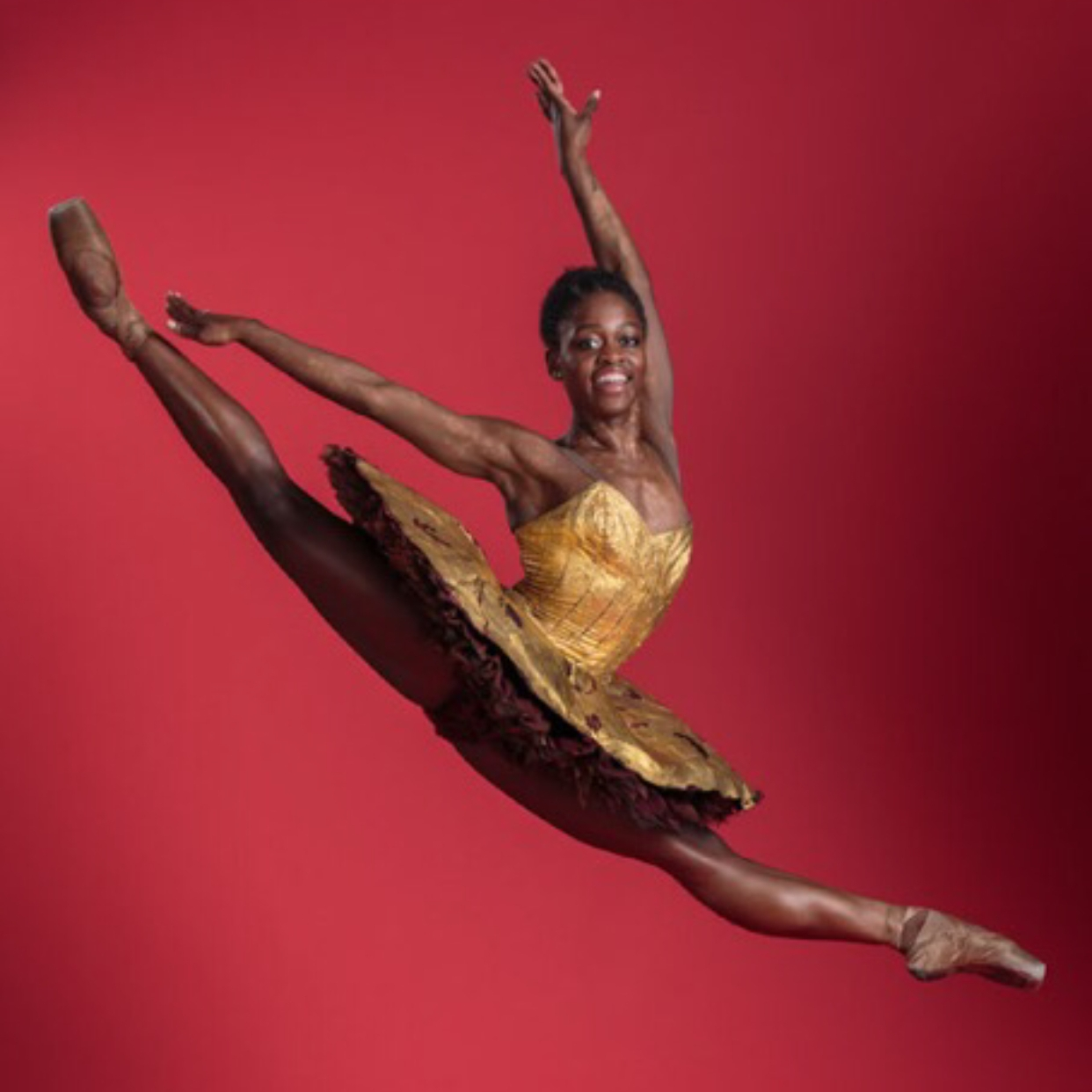 Michaela DePrince, Photographer Michel Schnater RV.jpg