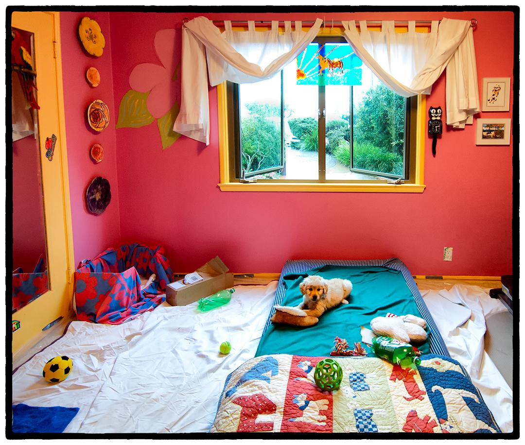 Brody's Room