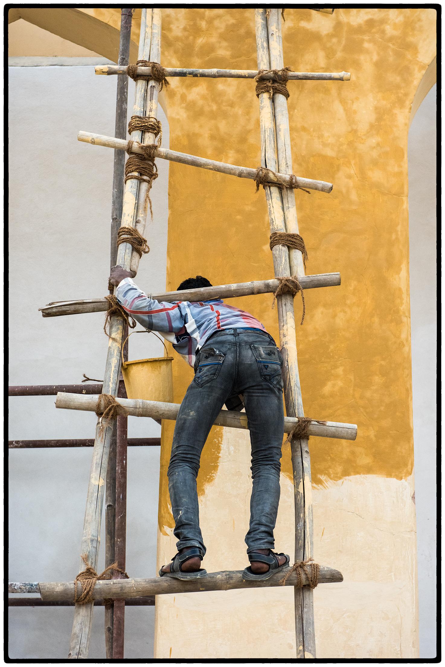 Painter, Rajasthan, India
