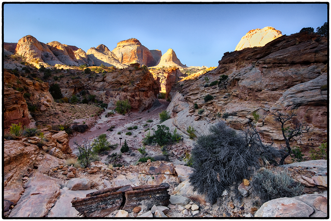 Along the Grand Wash in Capitol Reef National Park