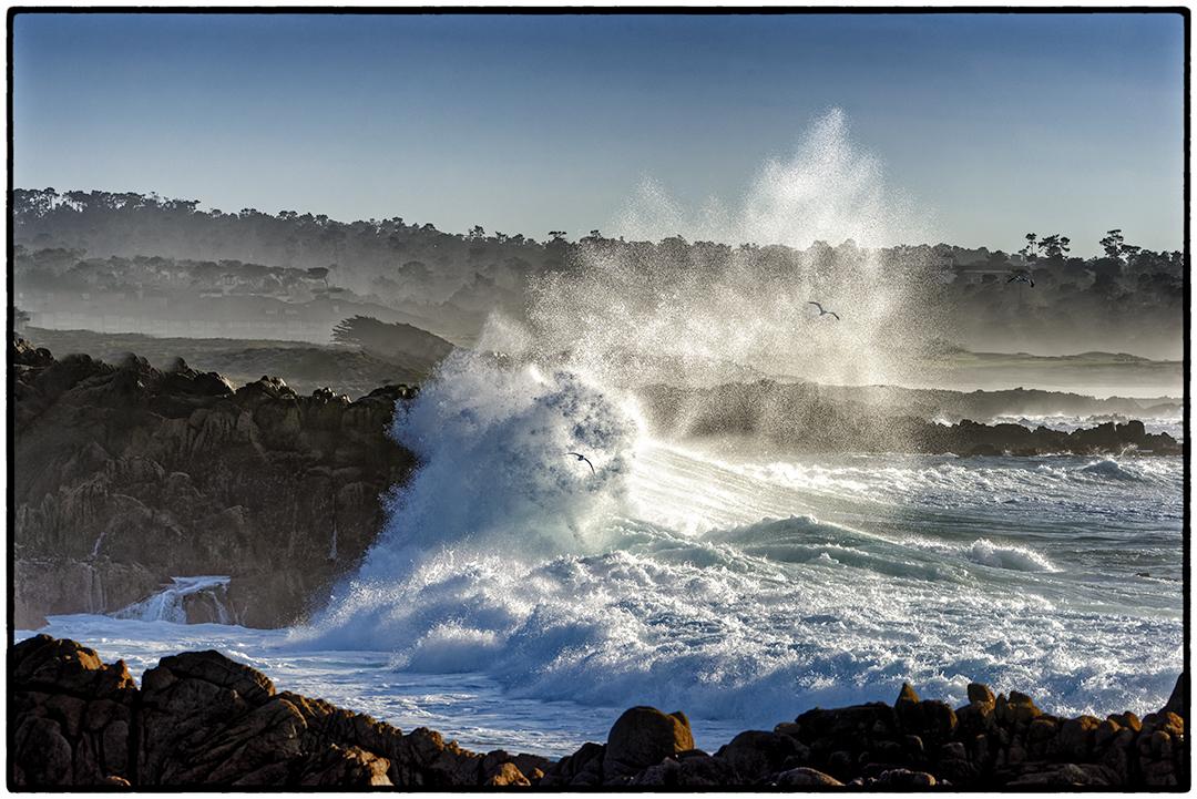 Waves, Gulls, Asilomar Beach