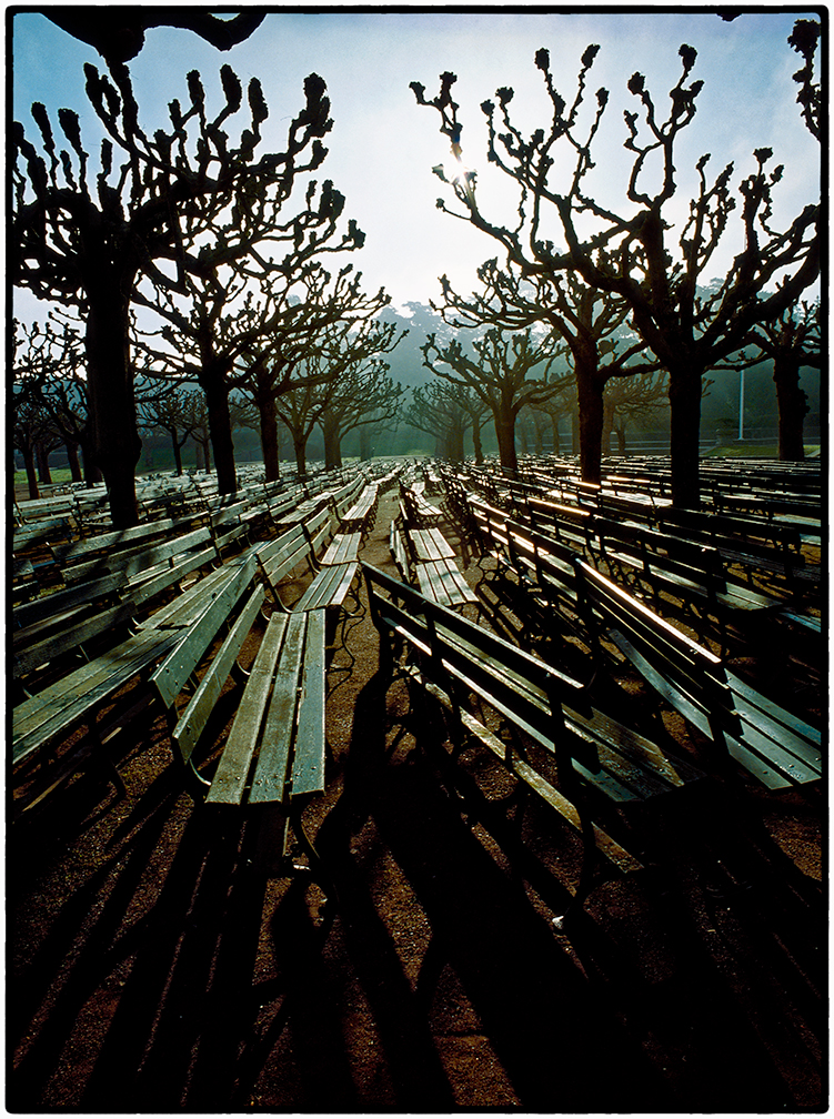 Benches, Golden Gate Park, 1978