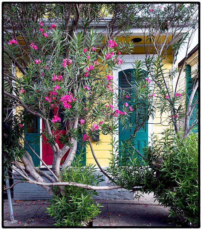 House, French Quarter