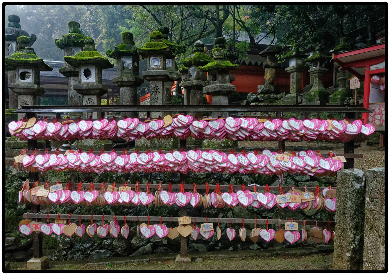 Prayers Left at Shinto Shrine