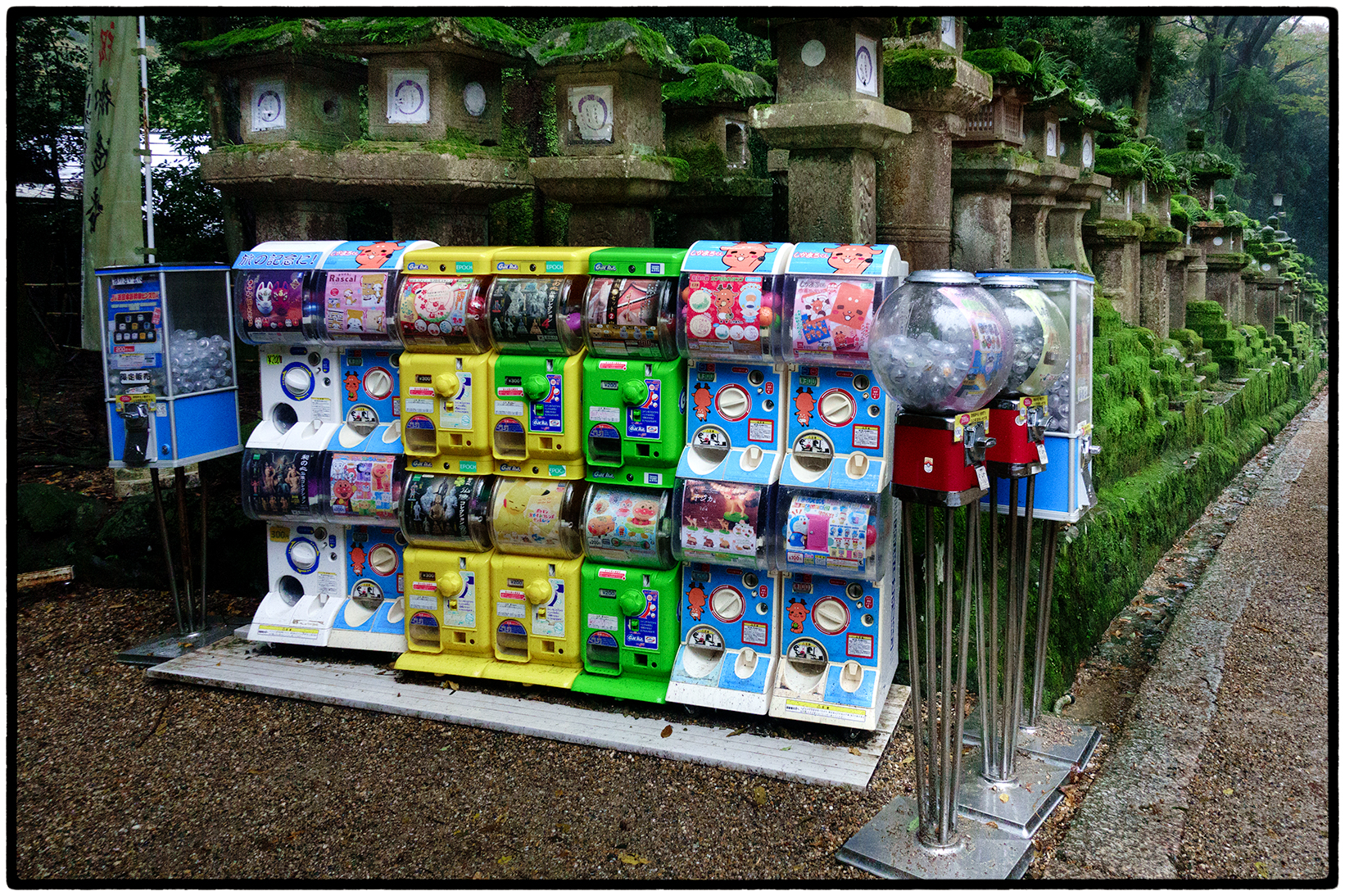 Vending machines at the Shinto Shrine. Nara