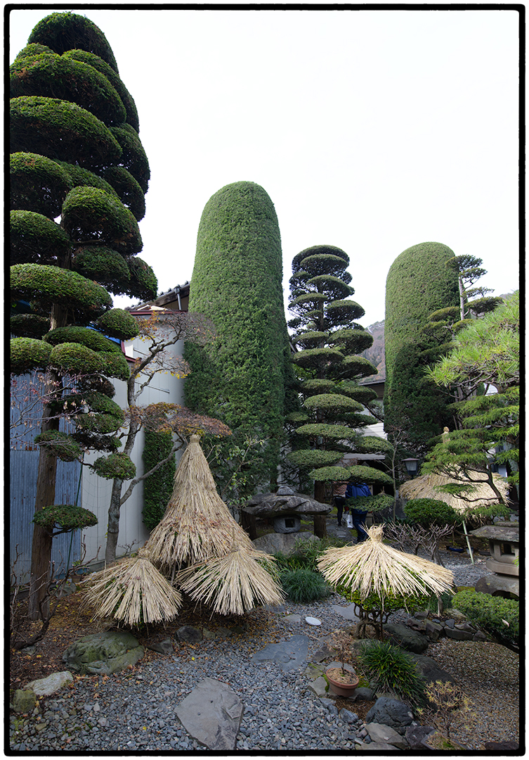 Private Garden in Hirasawa