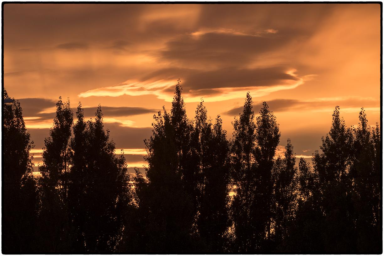 Sunrise, Laguna Nimez Estuary, Argentina