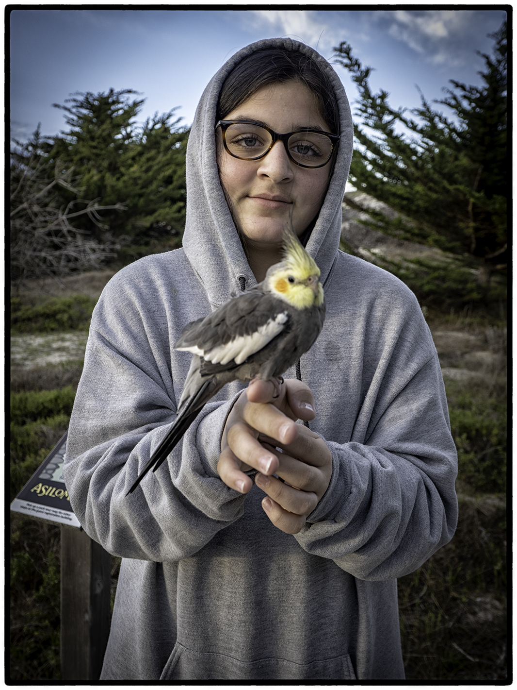 Girl with Cockatiel
