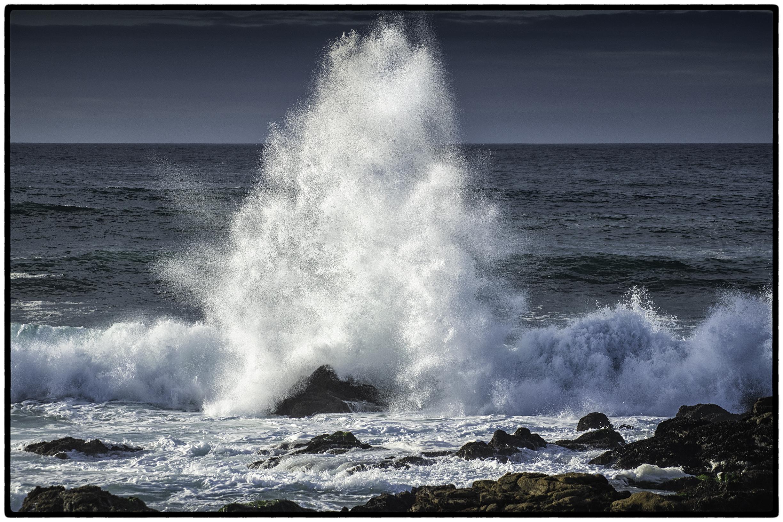 Surf, Monterey