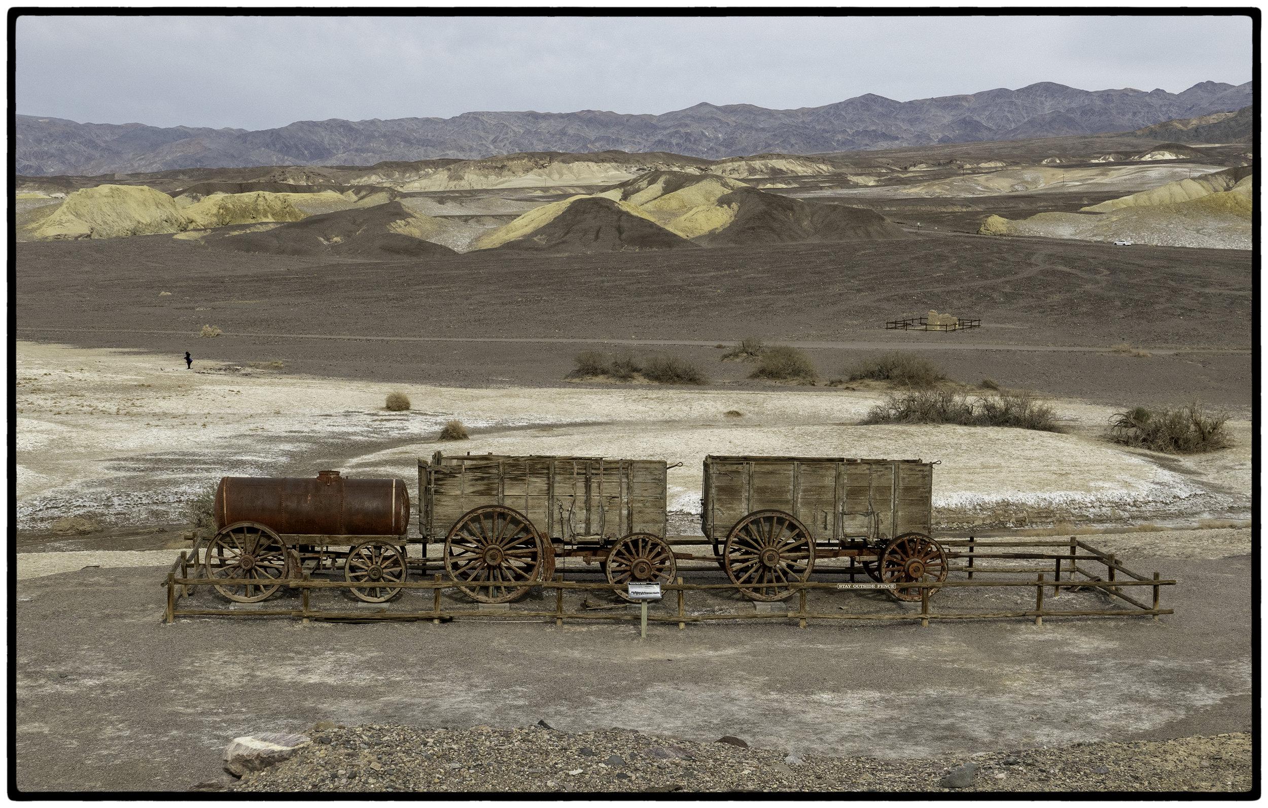 20 Mule Train