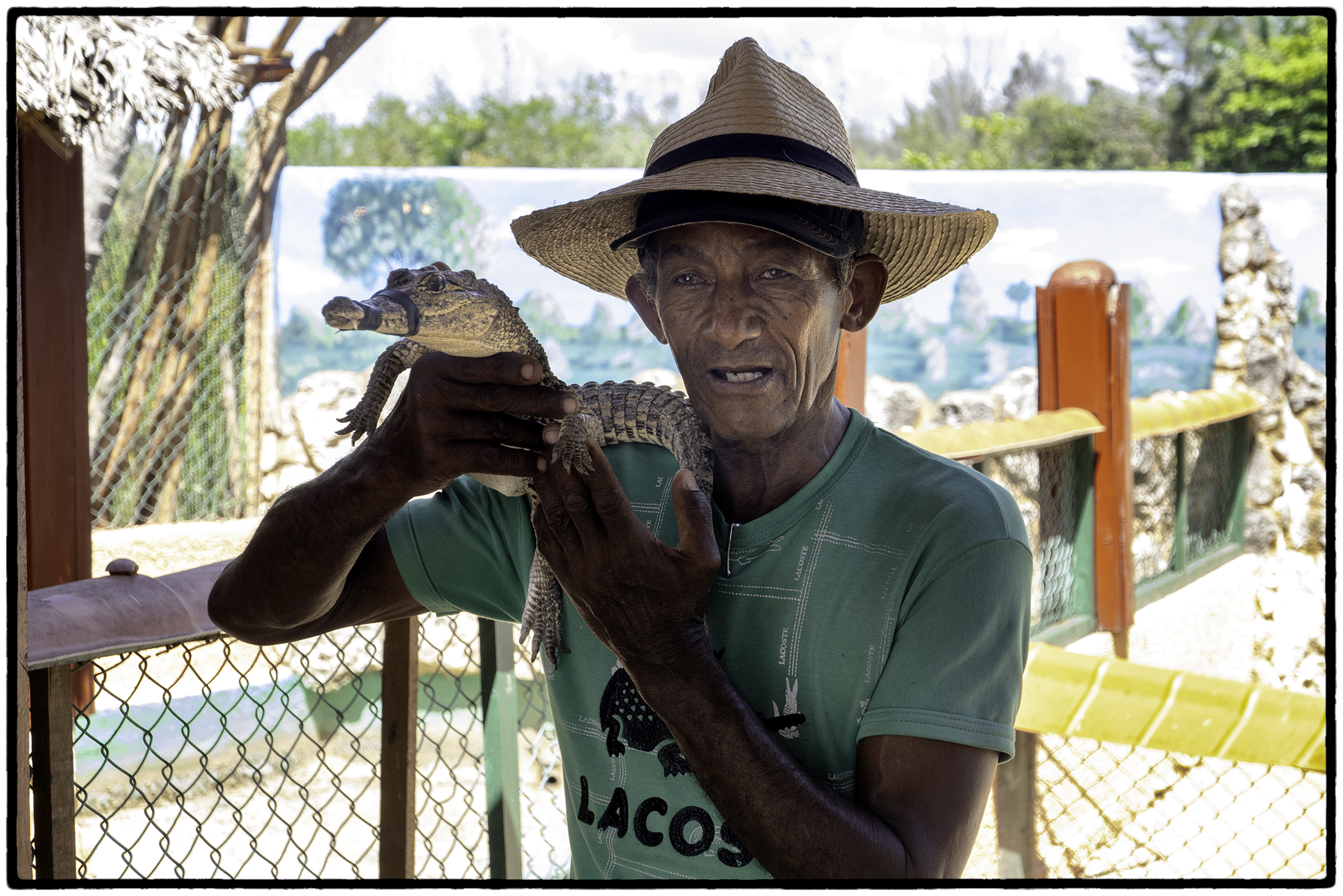 Crocodile Farmer