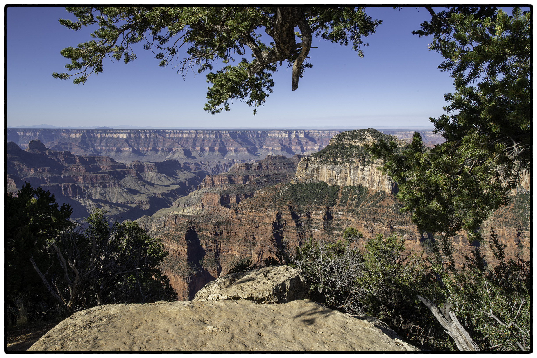 Grand Canyon, North Rim #1
