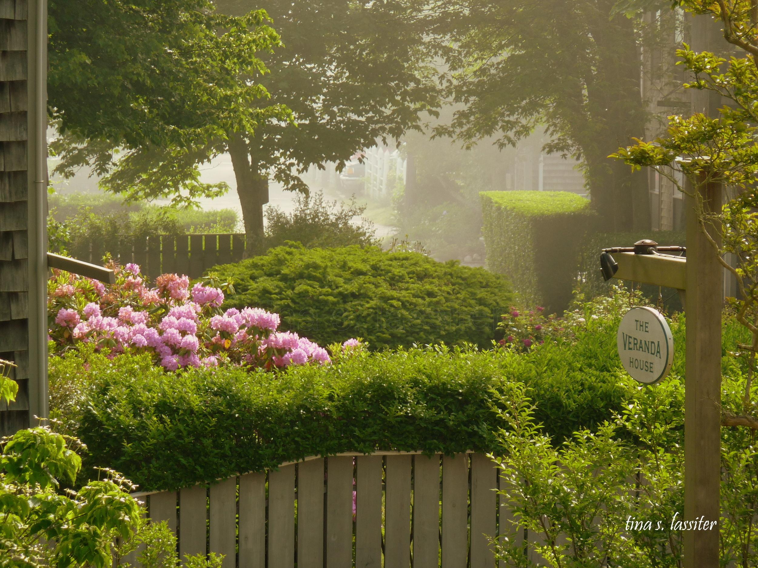 veranda hotel garden in fog