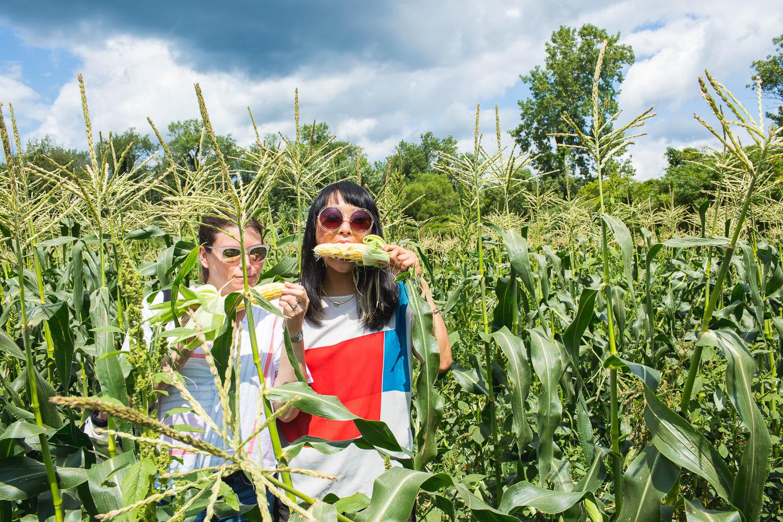 women eating corn in cornfield