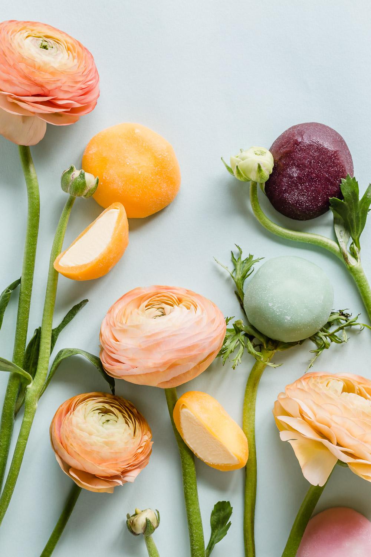 mochi flowers still life