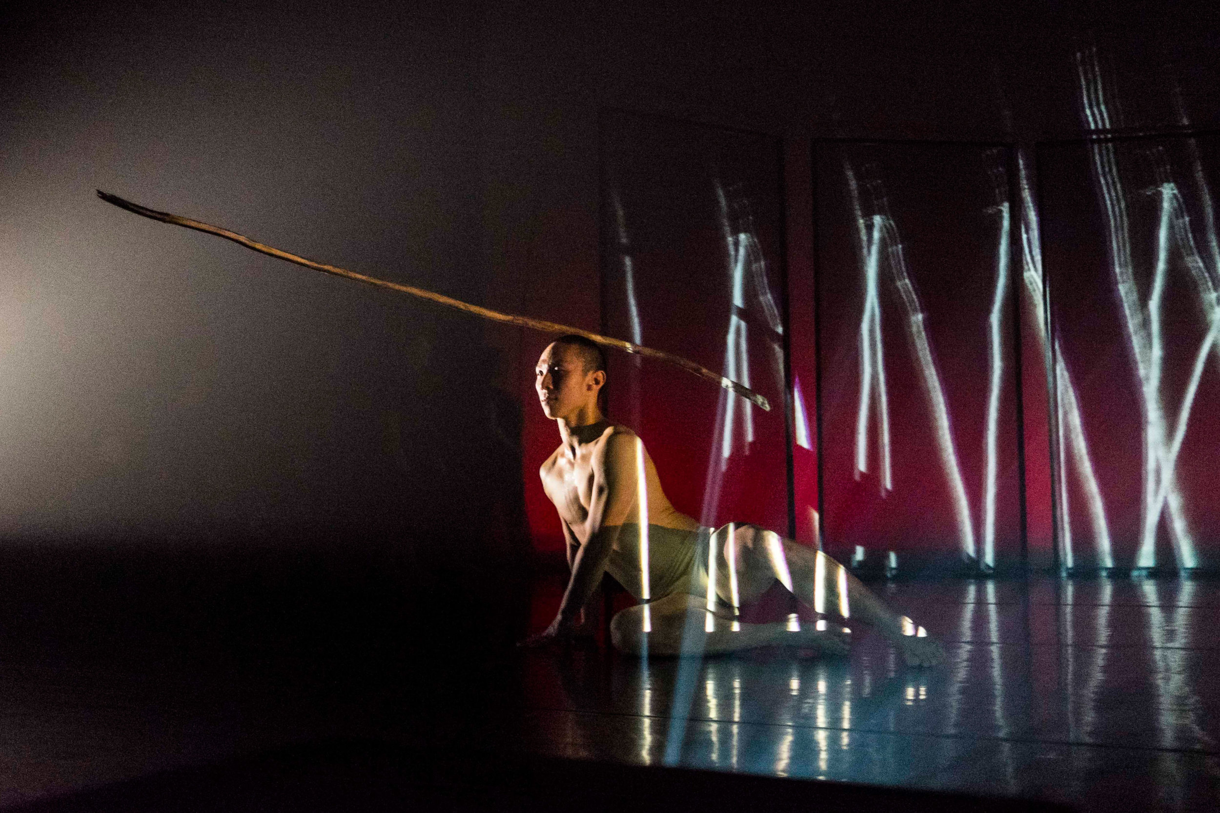 The New Zealand Dance Company – In Transit by Louise Potiki Bryant.