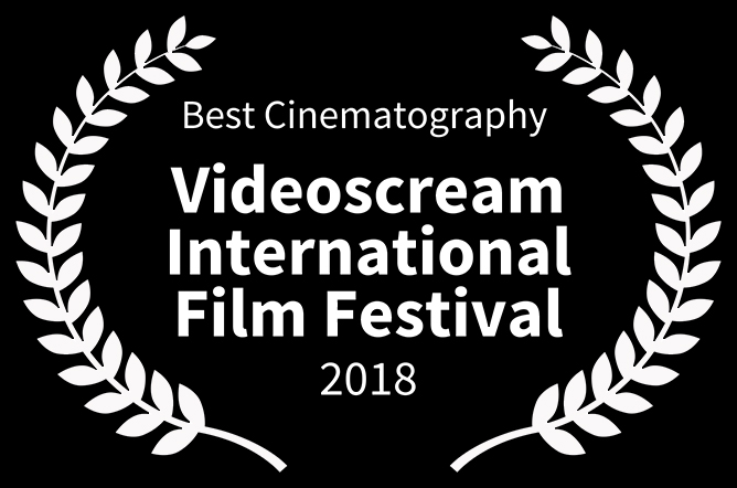 best cinematography_0005_Best Cinematography  - Videoscream International Film Festival - 2018.jpg