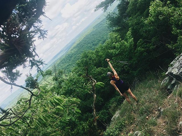 Why yes, I did shove my phone in a tree for this picture. #appalachiantrail . . . My dad's hip gave out on Thursday so I dropped him off in town and have been catching up solo to finish NY state tomorrow. I'm really so fortunate I got to hike with him at all. . . . (This is really just an ad for hiking buddies cause tree tripods are hard).