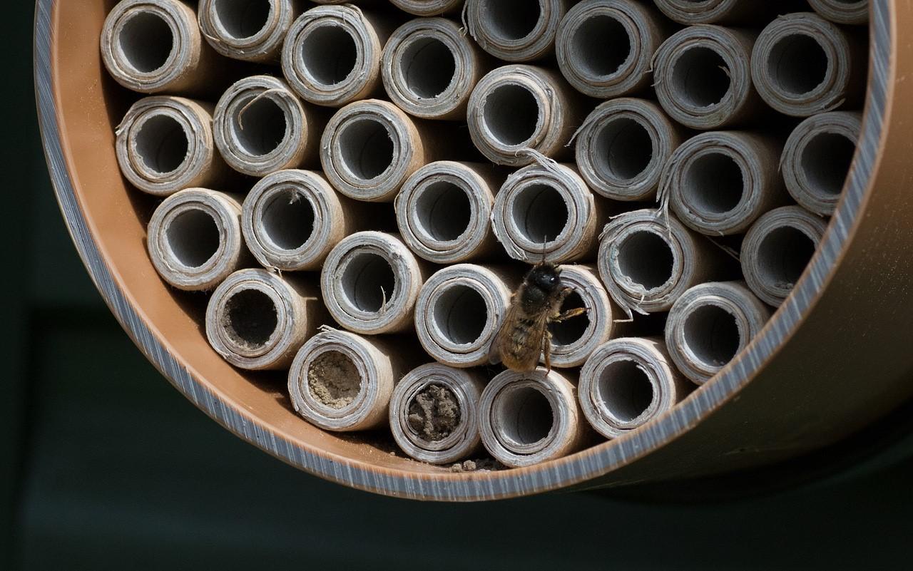 Nesting tubes